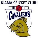 kiama cricket